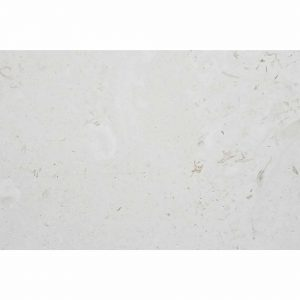 "Shell Beige 16""x24"" Limestone Tile 4 Shell Beige 16x24 Tile Product Picture"